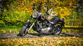 Harley Davidson Dyna small